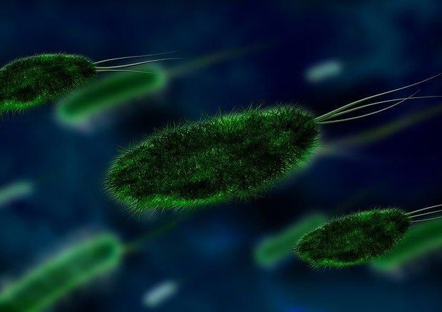 symptoms of Life Taking Coronavirus