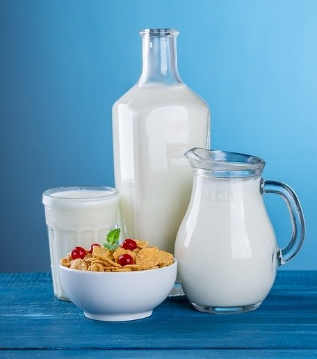 milk dairy products